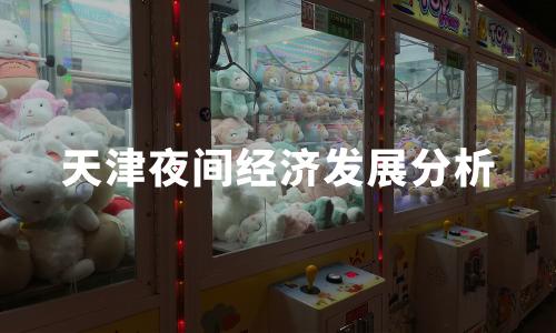 2020中国代表城市夜间经济发展分析——天津