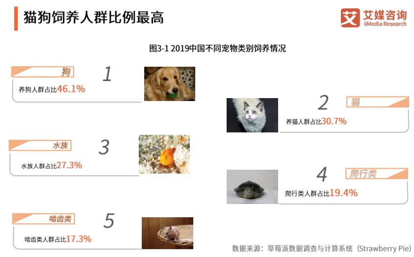 2019宠物经济运行报告:狗和猫较受养宠人群喜好,宠物主题餐厅、咖啡厅日渐走俏