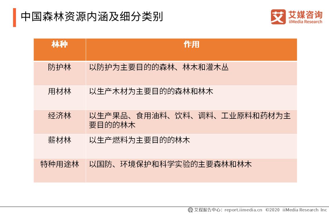 中国森林资源内涵及细分类别