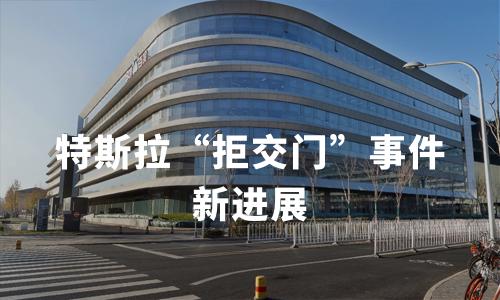 来自上海的拼多多团购车主顺利提车,特斯拉送货上门