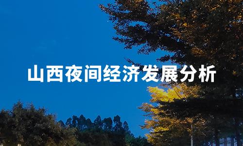 2020中国代表城市夜间经济发展分析——山西