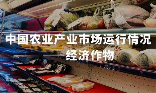 2020年中国农业产业市场运行情况——经济作物