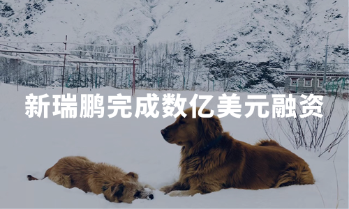 新瑞鹏完成数亿美元融资,2020年宠物医疗市场发展现状分析