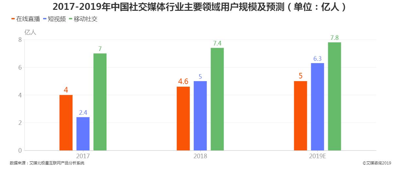 2017-2019年中国社交媒体行业主要领域用户规模