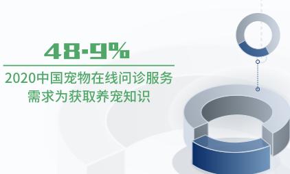 寵物市場數據分析:2020中國48.9%寵物在線問診服務需求為獲取養寵知識
