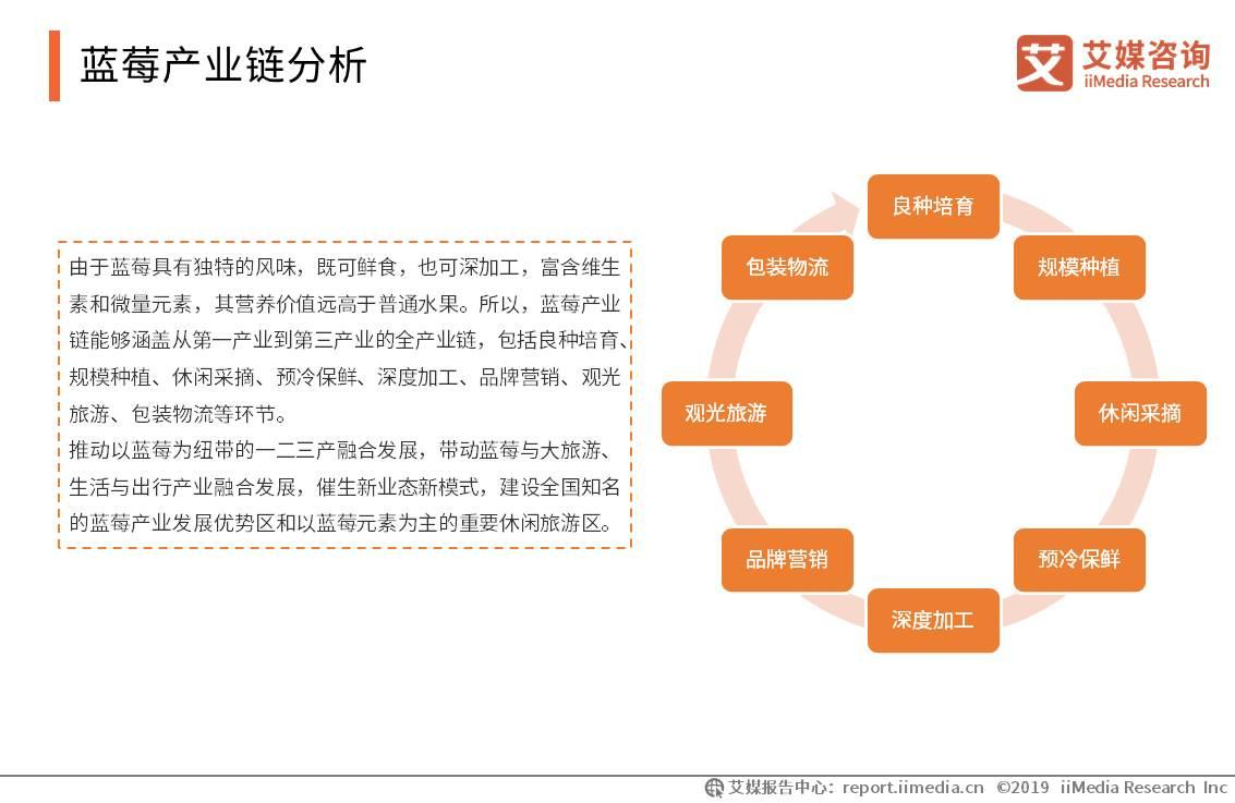 蓝莓产业链分析