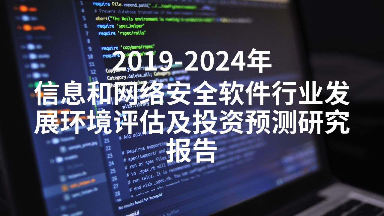 2019-2024年信息和网络安全软件行业发展环境评估及投资预测研究报告