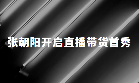"""张朝阳""""营业"""":开启直播带货首秀,姗姗来迟的搜狐能否后者居上?"""