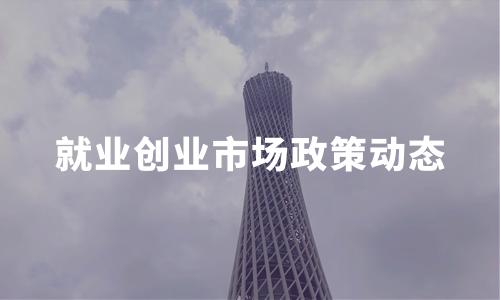 2020中国就业创业发展现状及市场政策动态解读