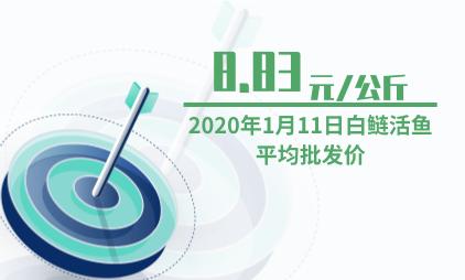 农产品行业数据分析:2020年1月11日白鲢活鱼平均批发价为8.83元/公斤
