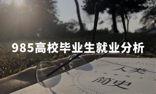 中国985高校毕业生就业分析:就业率、就业单位、薪酬