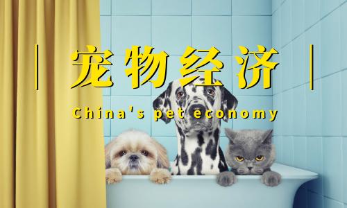 """""""它经济""""达千亿规模!102页报告深度解读宠物经济发展现状及趋势"""