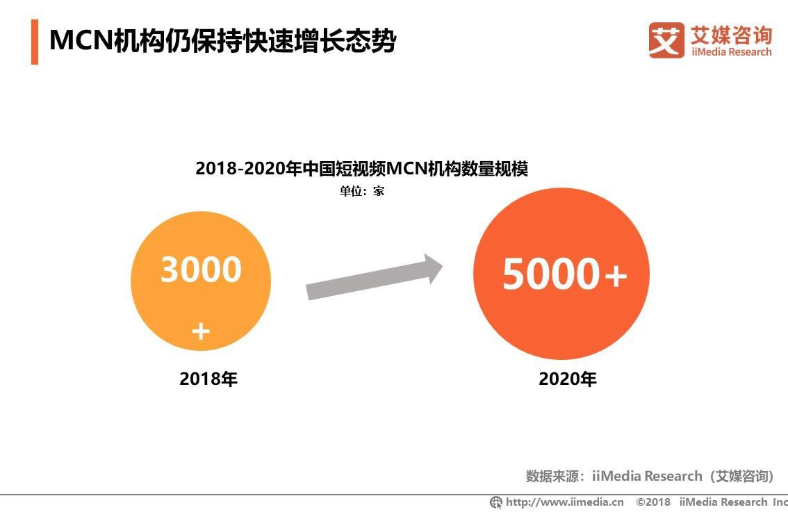 MCN机构保持快速增长态势