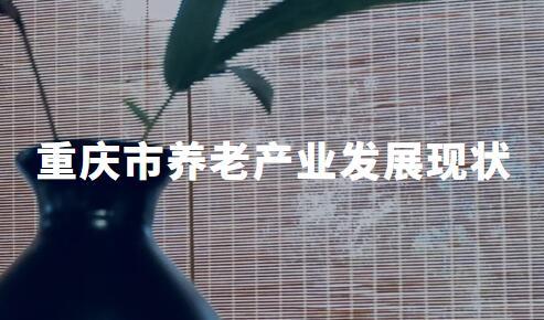 2020H1重庆市养老产业发展现状及典型模式案例分析