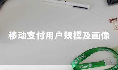 2019-2020中国移动支付用户规模、用户画像及行为分析
