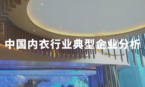 2020年中国内衣行业典型企业分析:都市丽人