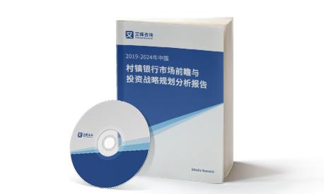 2019-2024年中国村镇银行市场前瞻与投资战略规划分析报告
