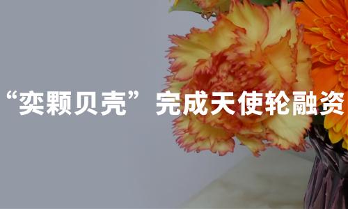 """""""奕颗贝壳""""完成数百万元天使轮融资,2019-2020中国在线音乐大发一分彩发展现状、商业模式分析"""