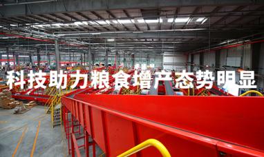 2020中国粮食产业报告:科技助力粮食增产态势明显,交易电商化成趋势
