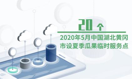 地摊经济数据分析:2020年5月中国湖北黄冈市设有20个夏季瓜果临时服务点