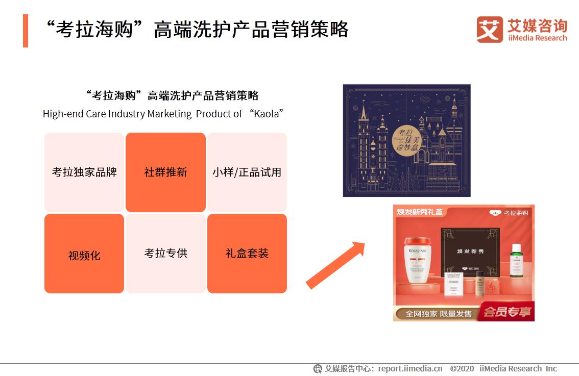 """""""考拉海购""""高端洗护产品营销策略"""