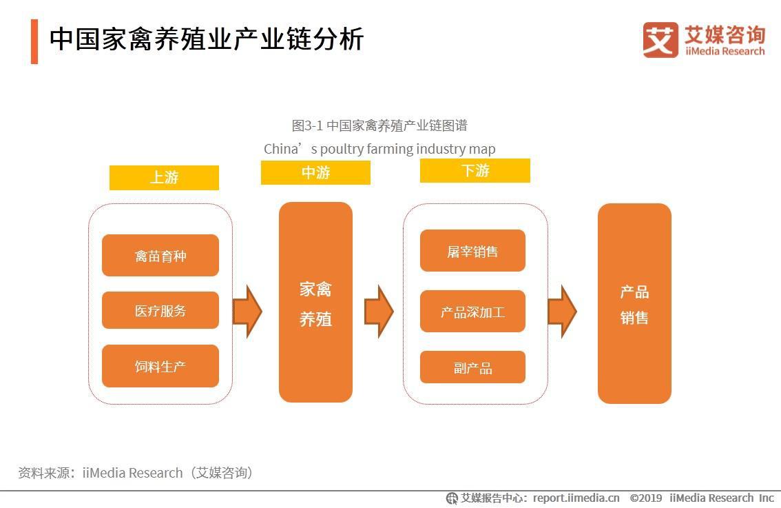 中国家禽养殖业产业链分析