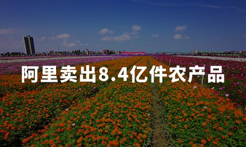 阿里丰收节卖出8.4亿件农产品,2020中国农货电商市场发展趋势分析