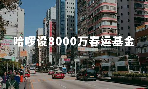 哈啰顺风车拟砸8000万春运基金,预计2020年春运运送人数达1280万