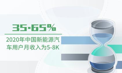 新能源汽车行业数据分析:2020年中国35.65%新能源汽车用户月收入为5-8K