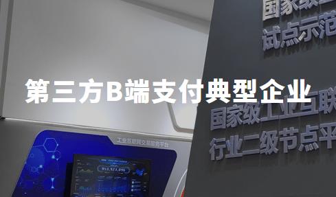 2019中国第三方B端支付典型企业分析——拉卡拉、苏宁支付、易宝支付