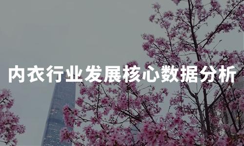 2020年中国内衣行业发展因素及核心数据分析