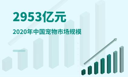 宠物经济数据分析:2020年中国宠物市场规模为2953亿元
