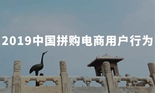 苏宁拼购2月份订单量增长866%!2019中国拼购电商用户行为分析