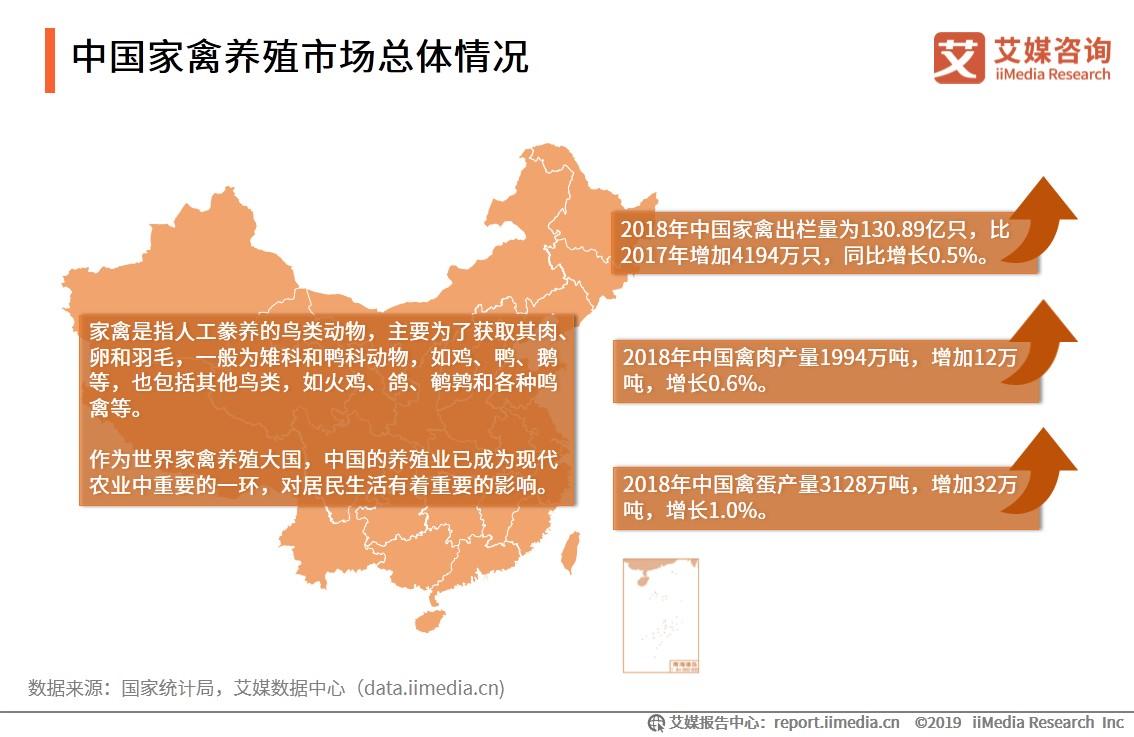 中国家禽养殖市场-艾媒咨询