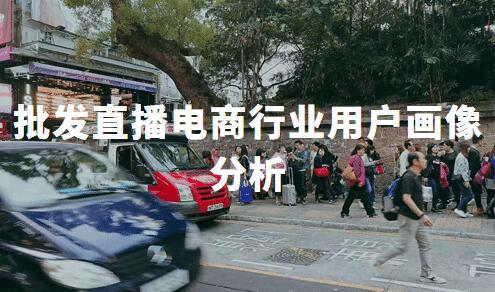 2020中国批发直播电商行业用户画像分析