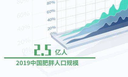 瘦身行业数据分析:2019中国肥胖人口规模达2.5亿人