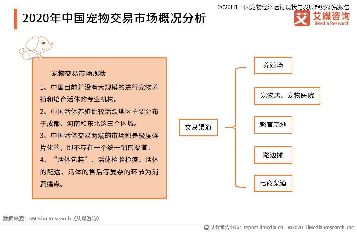 2020年中国宠物交易市场概况分析