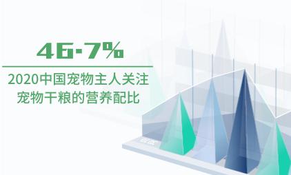 宠物行业数据分析:2020中国46.7%宠物主人关注宠物干粮的营养配比
