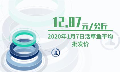 农产品行业数据分析:2020年1月7日活草鱼平均批发价为12.87元/公斤