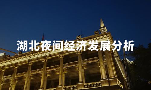 2020中国代表城市夜间经济发展分析——湖北