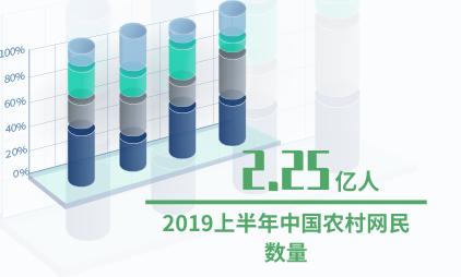零售行业数据分析:2019上半年中国农村网民数量达2.25亿人