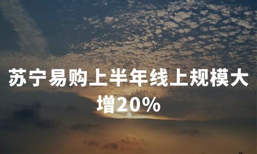 主攻快消,苏宁易购上半年线上规模大增20%,二季度净利润3.84亿
