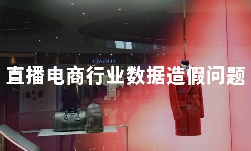 2020年中国直播电商行业数据造假问题分析
