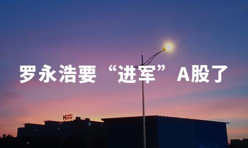 """""""真还传""""之后,罗永浩要""""进军""""A股了!"""