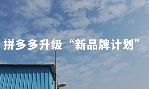 """拼多多升级""""新品牌计划"""":5年扶持100个产业带,助力中国制造企业打造新品牌"""