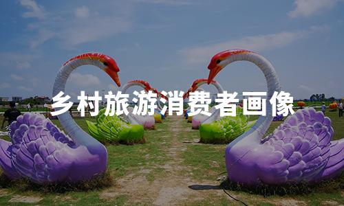 2020年中国乡村旅游消费者画像及行为分析