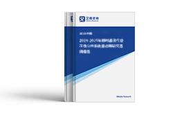 2019-2024年中国大数据行业发展研究报告